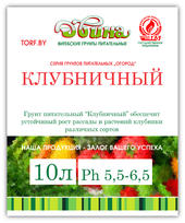 Nutritive substrate strawberry